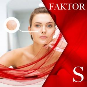 faktor_s-768x768